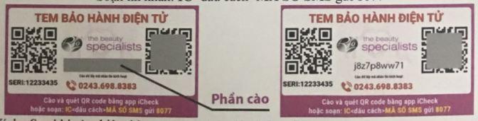hang tot nha khau bon ngam chan RIO FDBH7 141